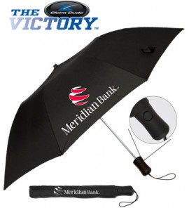 42 in. Deluxe Auto Open Folding Umbrella